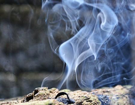 La contaminación ambiental, ¿cómo afecta a tu salud?