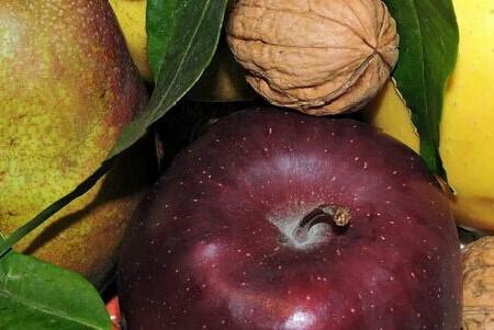 """Nueces con vegetales ricos en polifenoles: una """"combinación ganadora"""""""