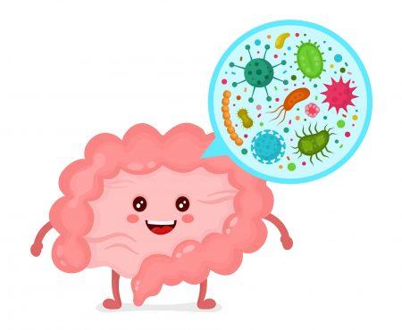Las bacterias intestinales y su importancia para la salud mental
