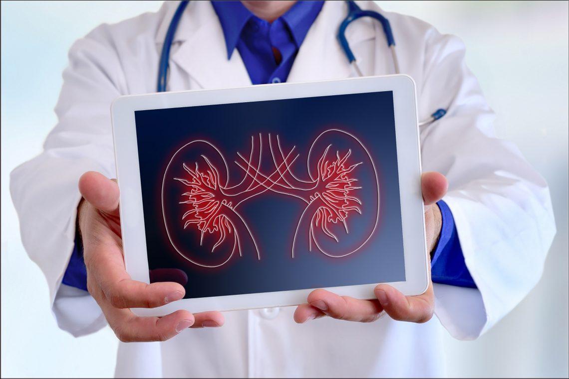 Cuidando al corazón, cuidamos los riñones