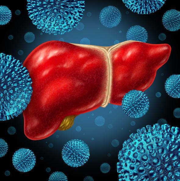 La Hepatitis C y el impacto de los antivirales actuales
