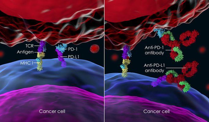 Inhibidores del punto de control inmunitario para tratar el cáncer
