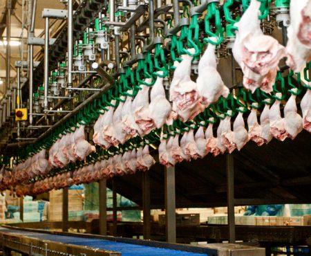 Control de la Listeriosis, desafío de la industria alimentaria