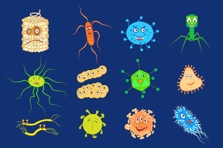 Eje microbiótica- intestino-cerebro