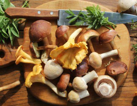 Las setas comestibles protegen del hígado graso no-alcohólico